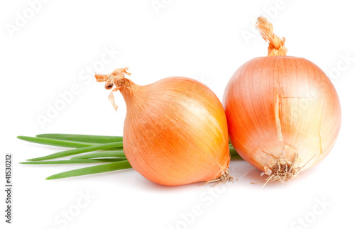 Two Fresh bulbs of onion and Fresh Scallions isolated on a white