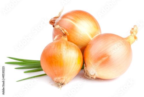 Three Fresh bulbs of onion and Fresh Scallions isolated on a whi
