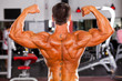 rear view of male bodybuilder