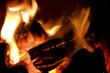 peat briquettes burning - 41537078