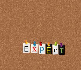 expert notice concept