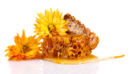 tasty honeycombs and flowers isolated on white