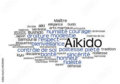 Web Art Design AIKIDO TAG CLOUD NUAGE  30