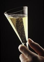 Copa de Champagne_02