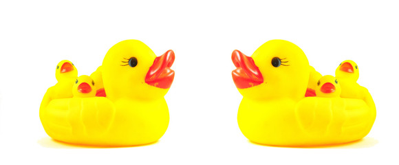 two yellow duck toy isolated on white