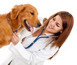 Female veterinarian