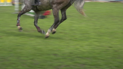 horse race jump close up 02
