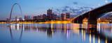 City of St. Louis skyline. - Fine Art prints