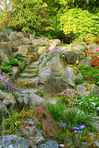 Papiers peints Azalea Rock garden