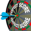 Perfect Score Words Dart on Dartboard Winner