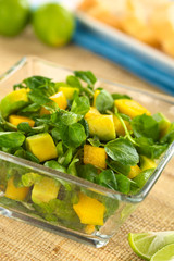 Fresh watercress, mango and avocado salad