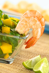 Cooked shrimps with watercress, mango, avocado salad