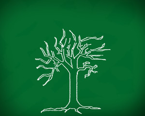 The tree on the blackboard.