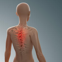 back and spine injury