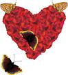 red rose heartand four butterflies