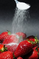 Sprinkling sugar onto strawberries © Arena Photo UK