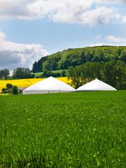 Biogas Anlage vor Rapsfeld