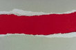 Papel rasgado, fondo, marco