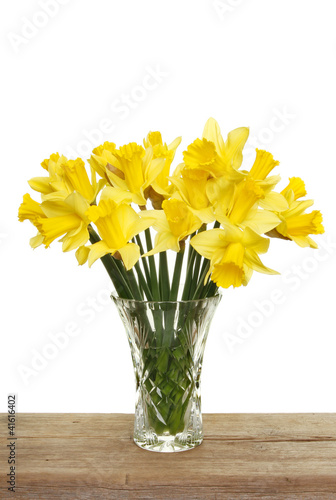 Fotobehang Narcis Bunch of daffodils