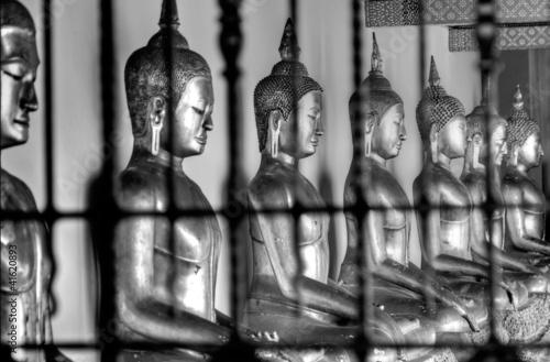 Buddhas Meditating