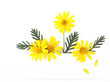 Yellow daisy flower banner