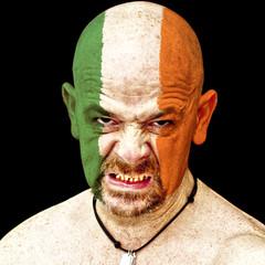 Ireland sports fan