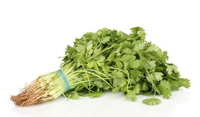 fresh coriander or cilantro isolated on white