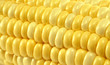 Yellow corn macro