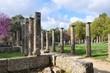 Perspective et colonnes du palestre d'Olympie
