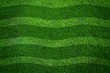 Green grass texture background And wavy lines