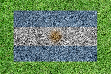 Flag of Argentina as a painting on green grass background