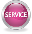 "The button labeled ""SERVICE"", the icon"