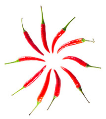 the circle chillis isolated