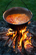Cooking traditional hungarian paprika potatoes in a cauldron