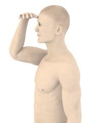 3d render of artifical mala face - looks