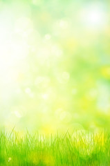 abstract nature background spring greens