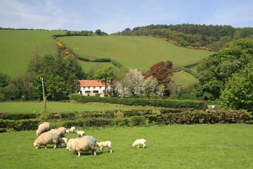 Village of Malmsmead in Exmoor