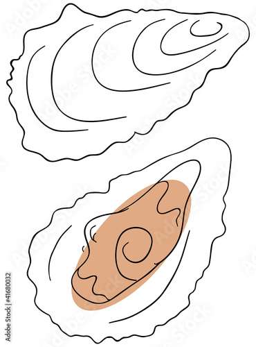 Vector oyster is isolated on a white background