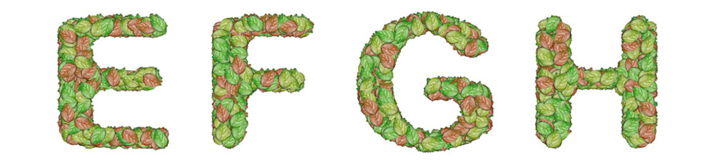 alphabet leaf on white background E F G H