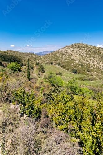 Paysage de Garrigue aride_Garrigue arid landscape.