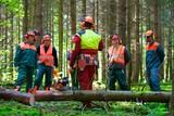 Waldarbeiter - Baumfällen
