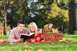 A young couple reading a book in a park, having picnic