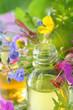 Duft wilder Blüten