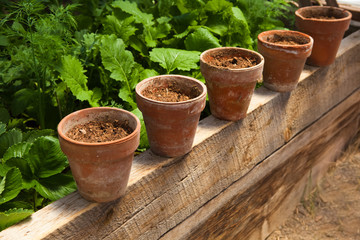 Terracotta pots with soil