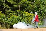 Fogging to prevent spread of dengue fever poster