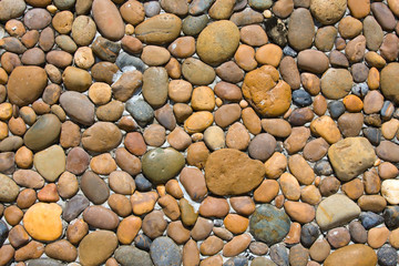 Background of small marine stones