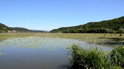 lago di fimon provincia di vicenza veneto