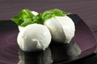 fresh mozzarella with basil-mozzarelline di bufala
