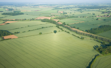 view over the early summer green fields
