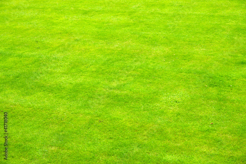 Background of some very green english grass